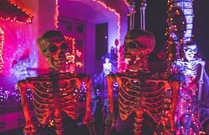 Biskup w liście do diecezjan przypomina o katolickiej symbolice i chrześcijańskich korzeniach Halloween