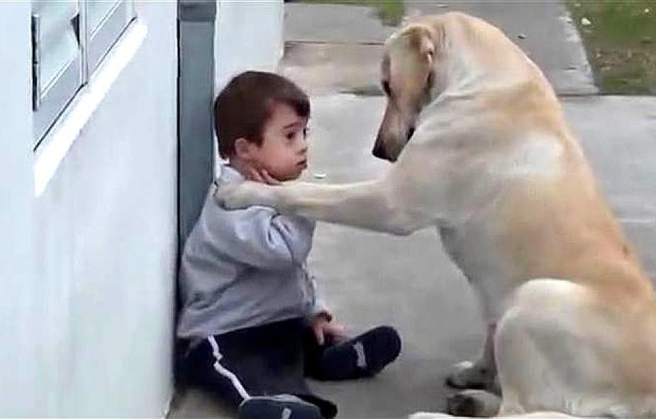 Chłopiec z Zespołem Downa nie miał żadnych przyjaciół. Wtedy w jego życiu pojawił się pewien pies