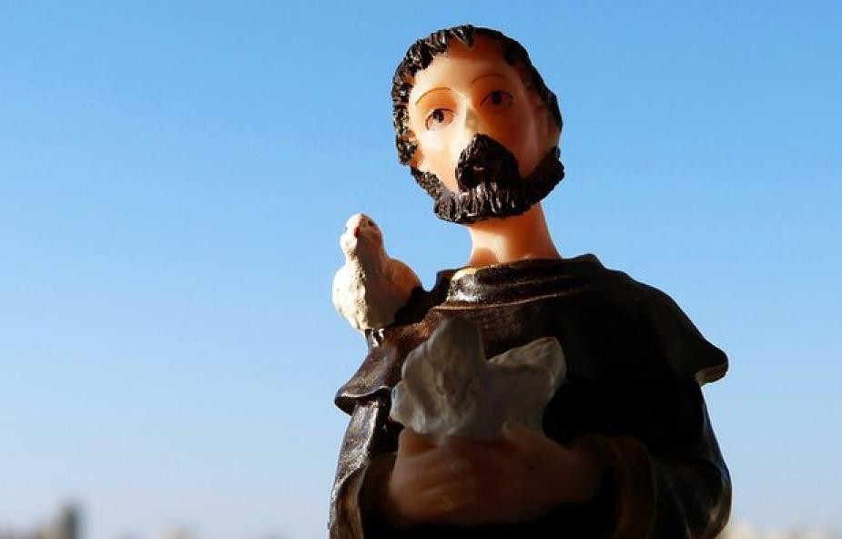 Święty, który rozmawiał z ptakami i pozdrawiał kwiaty