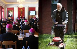 Czy polscy biskupi koszą swoje trawniki?