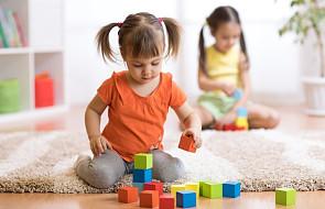 Eksperci apelują do polskich władz: żłobki nie są optymalną formą opieki nad małymi dziećmi