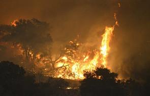 USA: Liczba ofiar śmiertelnych pożarów w Kalifornii wzrosła do 63