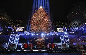 USA: choinka w Rockefeller Center rozbłysła 50 tys. świateł. Gwiazda na szczycie ma średnicę ok. 3 metrów i waży ponad 400 kg