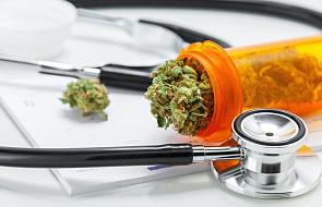 Izrael: parlament przyjął ustawę o eksporcie leczniczej marihuany jako trzeci na świecie