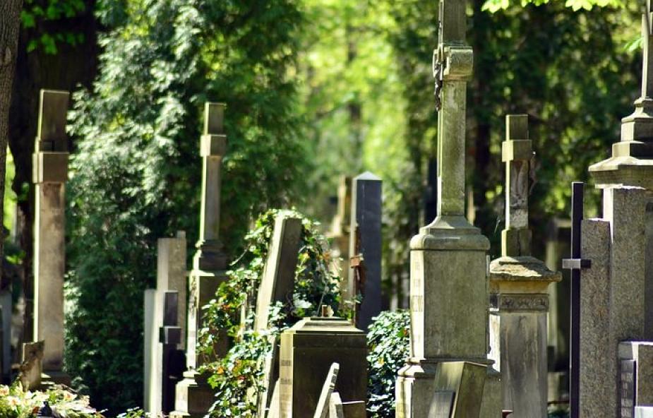 Liczne kradzieże na Cmentarzu Powązkowskim. Archidiecezja reaguje