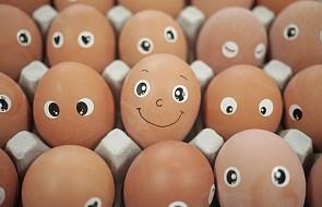 Wielkanoc nie jest wcale okresem, w którym jaja sprzedają się najlepiej