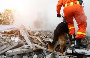 Papua-Nowa Gwinea: nowy bilans ofiar trzęsienia ziemi - 67 ofiar. Trzęsienie dotknęło 143 tys. osób