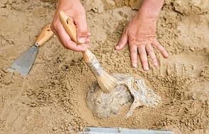 Płock: Kolejne szczątki ludzkie odkryte na terenie dawnego aresztu NKWD i UB
