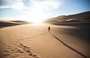 Algieria wydala migrantów, którzy bez wody i jedzenia zostają na Saharze