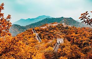 Chiny: specjalna ścieżka dla osób ze wzrokiem utkwionym w telefonach