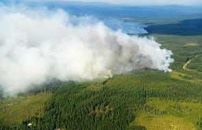 Świnoujście: polscy strażacy wyruszają gasić pożary w Szwecji