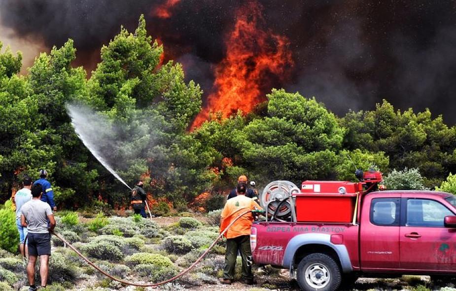 Grecja: prawie wszystkie pożary pod kontrolą