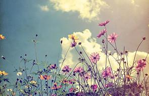#Ewangelia: rozjaśniać świat Bożym pięknem