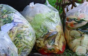 W UE wyrzuca się do śmieci 17 miliardów kg świeżych owoców i warzyw rocznie