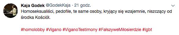 Czy gej to pedofil? Specjalista Episkopatu odpowiada m.in. Kai Godek - zdjęcie w treści artykułu