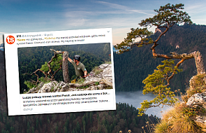 Specjaliści podjęli decyzję w sprawie uszkodzonej sosny na szczycie Sokolicy