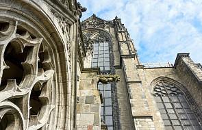 Ponad połowa holenderskich biskupów chroniła księży-pedofilów