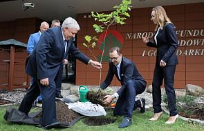 """Akcja na rzecz ochrony środowiska """"100 tys. drzew na 100-lecie niepodległości"""""""