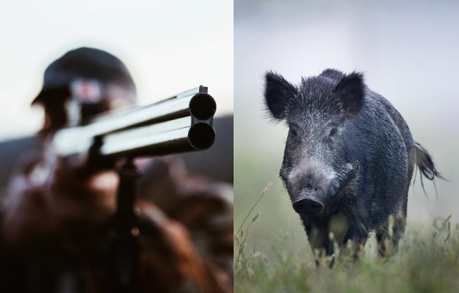 Biskup postrzelił myśliwego podczas polowania. Chciał zabić dzika