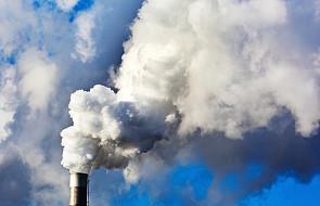 NIK: walka ze smogiem wymaga międzynarodowej współpracy
