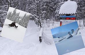 """Takiej zimy w górach jeszcze nie było. """"Uwaga! Wychodzimy z Kasprowego!"""""""
