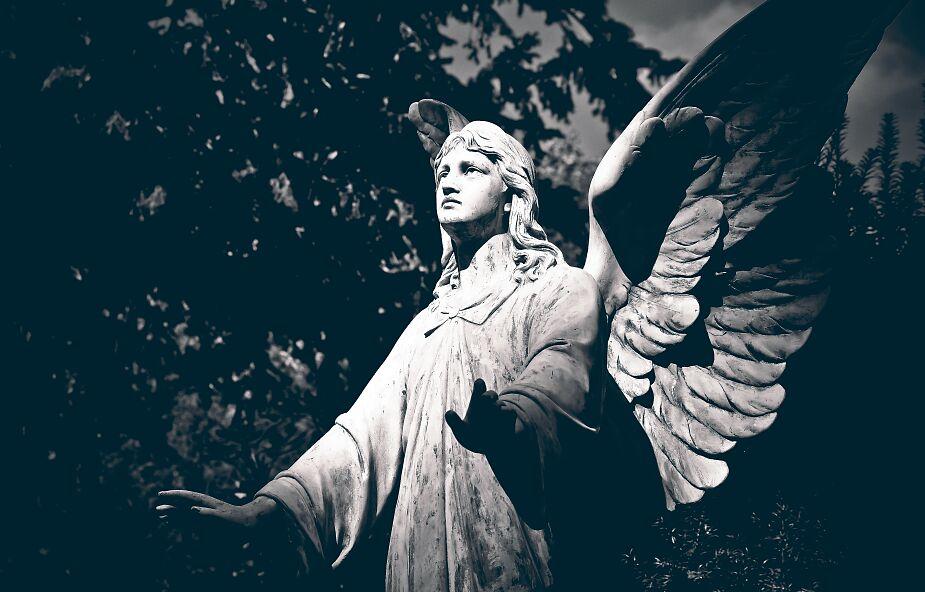Cherubini, serafini, trony. Jak wygląda świat aniołów?