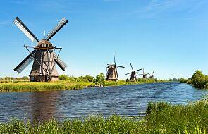 Holandia: protest przeciwko rządowej polityce ochrony środowiska