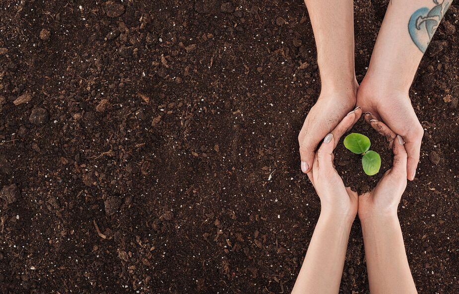 Wolontariusze Caritas uczyli się o ekologii. Chcą papieską encyklikę wprowadzić w życie