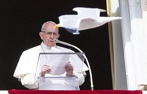 """Papież na """"Anioł Pański"""": oddanie się na służbę Jezusa nadaje życiu sens"""