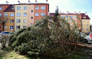 Podkarpackie: z powodu silnego wiatru bez prądu nadal około 1,1 tys. odbiorców