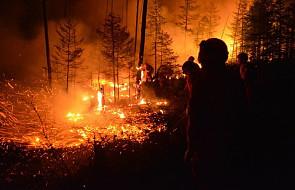 Chiny: 26 osób zginęło podczas walki z pożarem lasu. Przyczyną śmierci ludzi była nagła zmiana kierunku wiatru