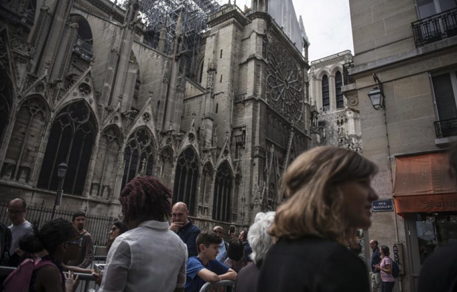 Prawie 200 tysięcy pszczół z dachu katdery Notre-Dame przeżyło pożar