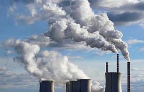 Polski Kościół wzywa wiernych i polityków do ochrony środowiska i klimatu
