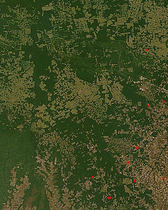 Brazylia: Amazonia straciła prawie milion hektarów terenów zielonych. Fotografie przerażają - zdjęcie w treści artykułu