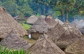 """W Amazonii wzrasta ilość aktów przemocy i zabójstw. Powstała specjalna """"mapa konfliktów"""""""