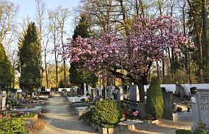 Mazowieckie: Pogrzeb ojca zaginionego Dawida