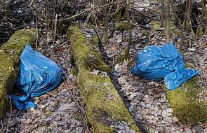 Austria: parlament uchwalił całkowity zakaz plastikowych toreb na zakupy