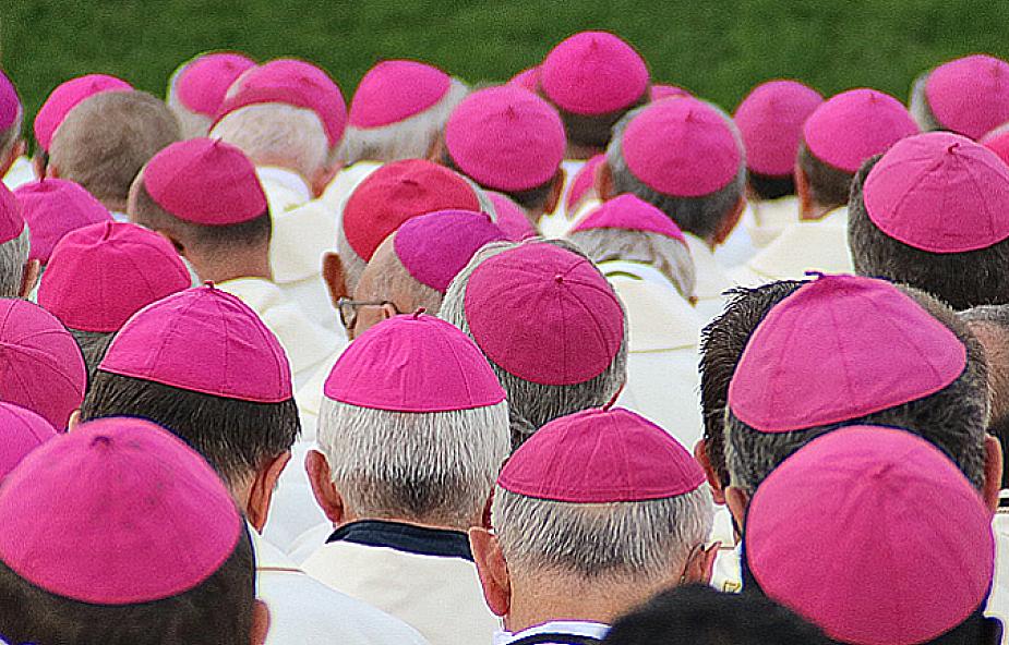 """Biskupi wzywają do """"integralnego nawrócenia ekologicznego"""""""