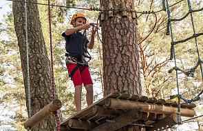 Włocławek: 11-latek spadł z wysokości 5-7 metrów w parku linowym