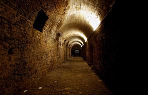 """W Portugalii dokonano niezwykłego odkrycia archeologicznego. """"Wartość znaleziska jest nieoceniona"""""""