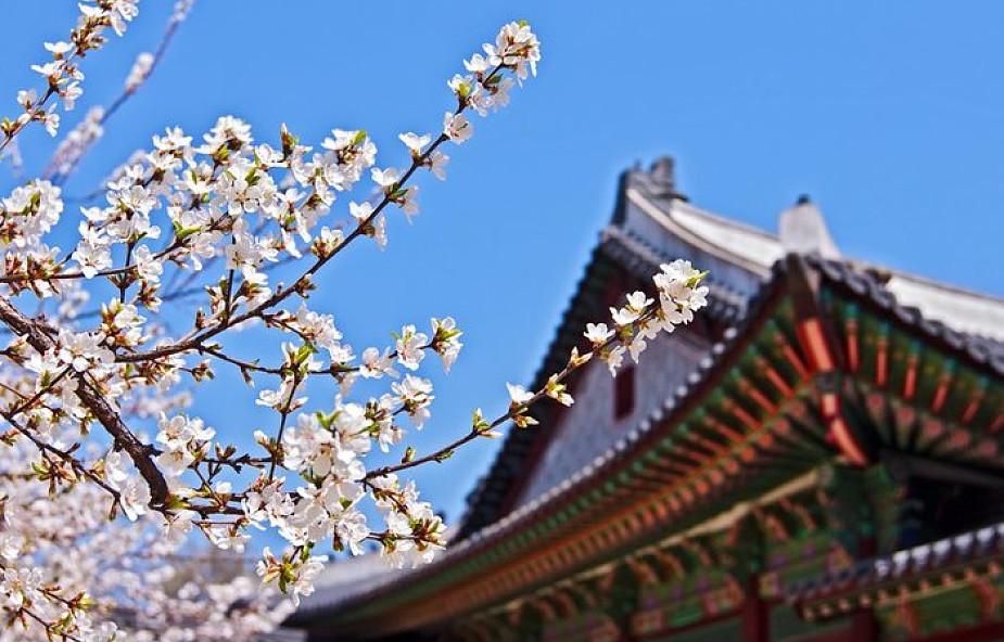 Koreańska pielgrzymka w strefie zdemilitaryzowanej