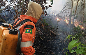 Ameryka Łacińska: biskupi wzywają do pomocy wobec pożarów Amazonii