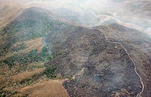 Brazylia: armia wyraziła gotowość do walki z rekordowymi pożarami