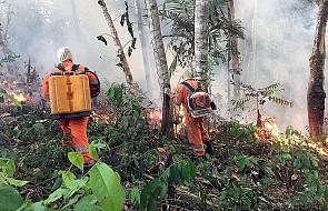 """Gigantyczna skala pożarów w Ameryce Południowej. Zagrożenie dla """"zielonych płuc planety"""""""