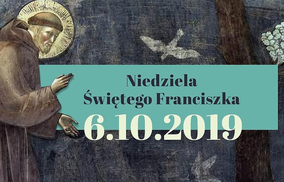 Katolicy biorą się za SMOG: Niedziela św. Franciszka 2019