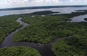 Światowa Rada Kościołów: pożary w Amazonii to kryzys międzynarodowy