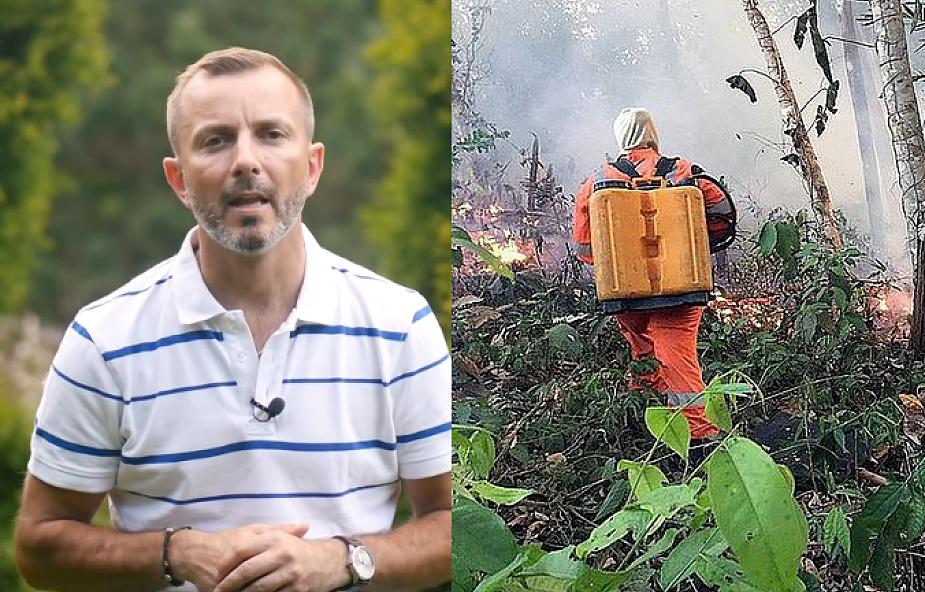Amazonia w ogniu fake newsów. Co naprawdę dzieje się w Puszczy Amazońskiej i komu na niej zależy?