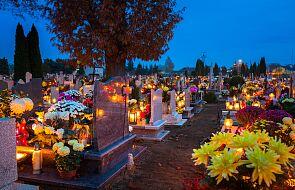 """Proboszcz z Ksawerowa zamienił nekropolię w """"Park cmentarny"""" i otworzył mimo zakazu"""