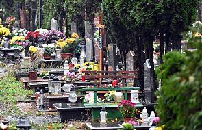 Nie tylko sprzedawcy chryzantem mają kłopoty. Pandemia grozi najpiękniejszemu polskiemu cmentarzowi