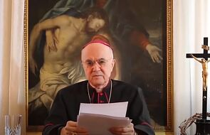 Raport ws. McCarricka: czy będą konsekwencje wobec zaniechań abp. Viganò?